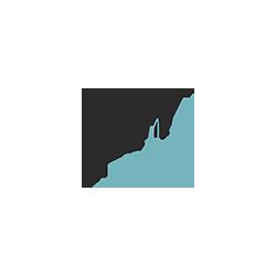 SDN art