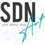 SDNArt